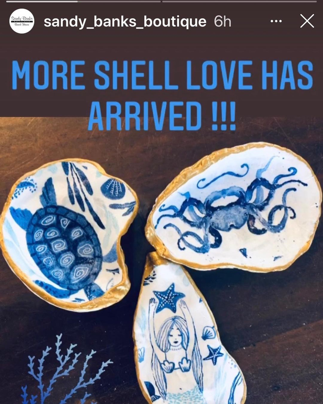 LBI Sandy Banks has restocked my shells! Great gift idea!         …