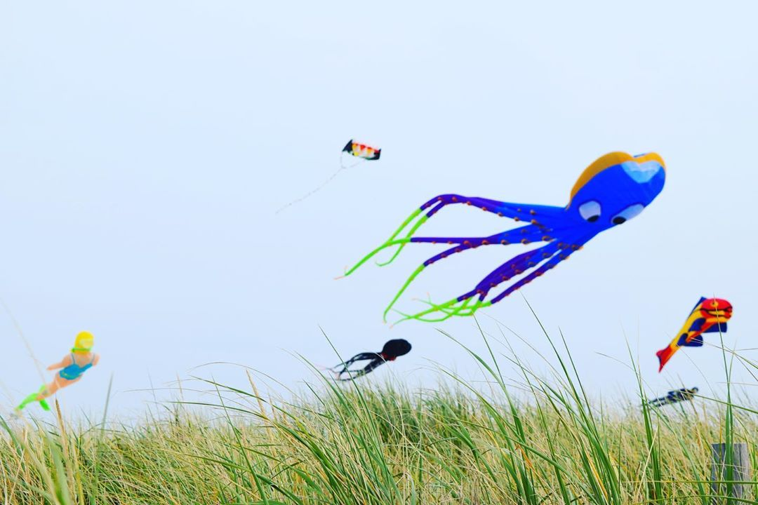 LBI The 6th Annual LBI Kite Festival is well underway – 18th St. Ship Bottom, NJ – t…