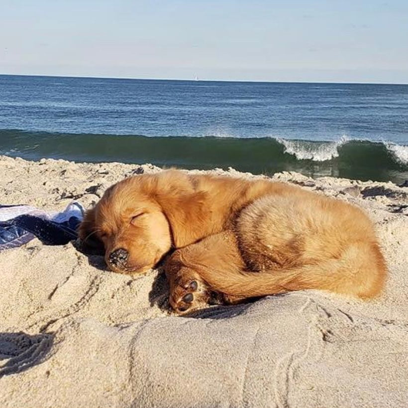 LBI Wake me up when it's summer again.    …