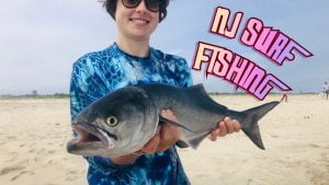 We're On The BLUES ! Surf Fishing For Spring BLUEFISH ! #LBI
