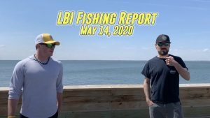 Read more about the article LBI NJ Area Fishing Report – May 14, 2020   Big Striped Bass Moved In! #LBI