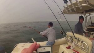 Striped Bass Trolling Off of LBI, NJ 11/17/2013 Using 9er's Lures aboard Sedge Fun #LBI
