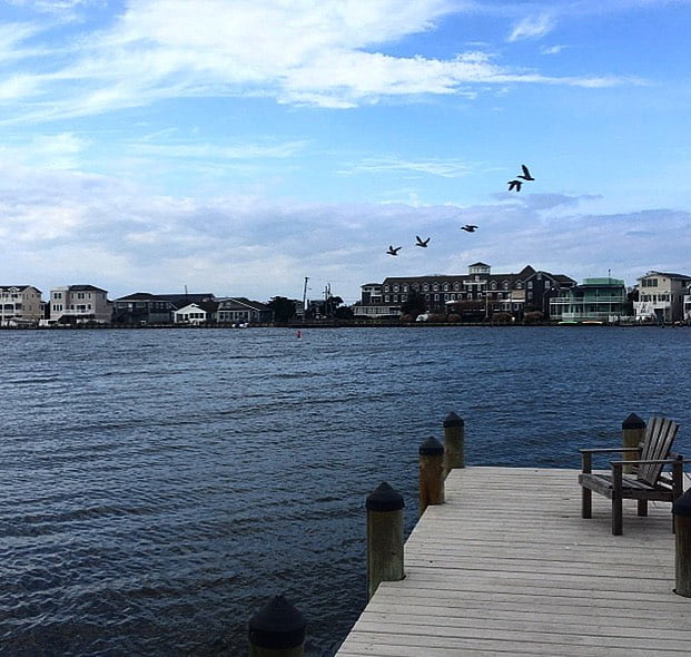 Read more about the article LBI Bliss     …