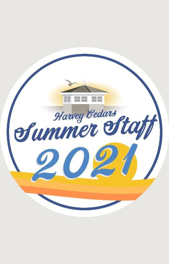 LBI TEENS AND YOUNG ADULTS AGES 14-24: Summer is coming… in just half a year! Summ…