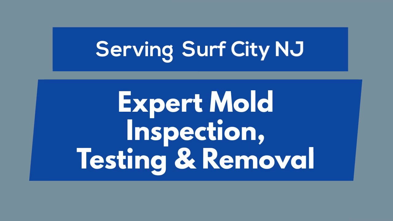 Surf City NJ   Mold Inspection, Testing & Removal #LBI