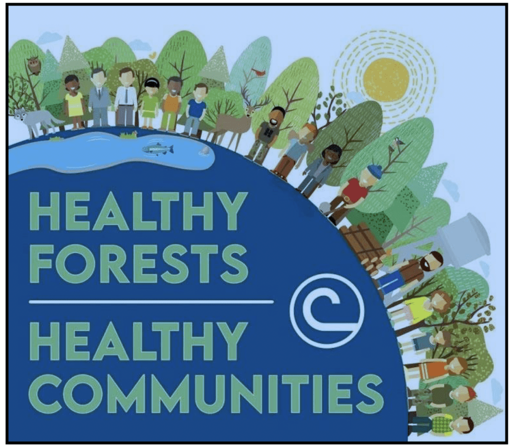 'Healthy Forests = Healthy Communities' Theme of Poster Contest for Kids