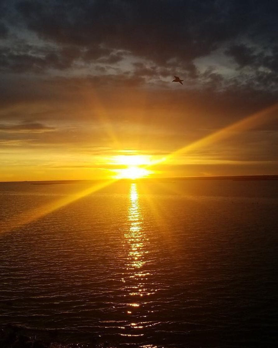 Read more about the article LBI A blindingly beautiful sunset, captured last night at the Ship Bottom boat ramp….
