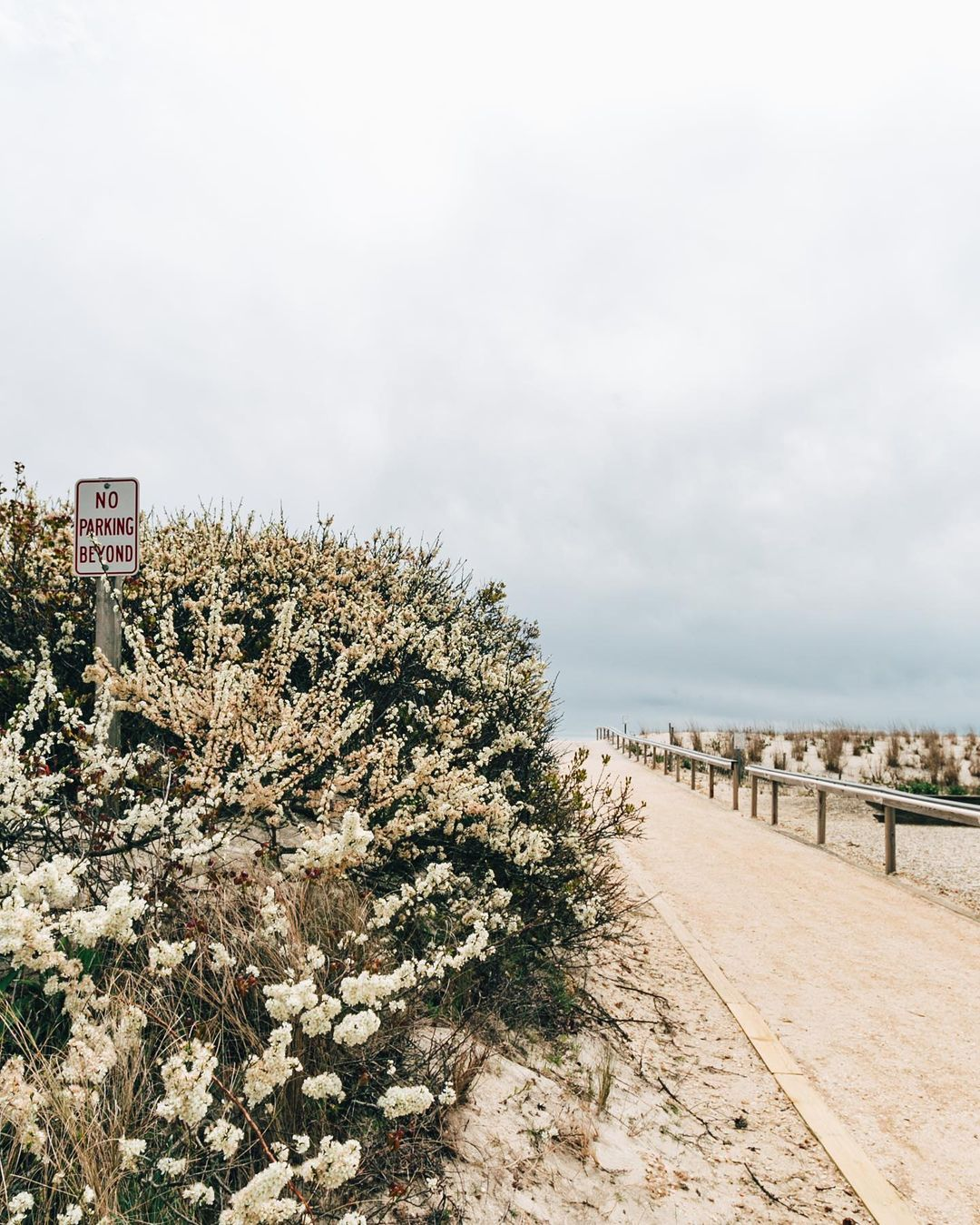 Read more about the article LBI Guess The Street? •            Photo: …