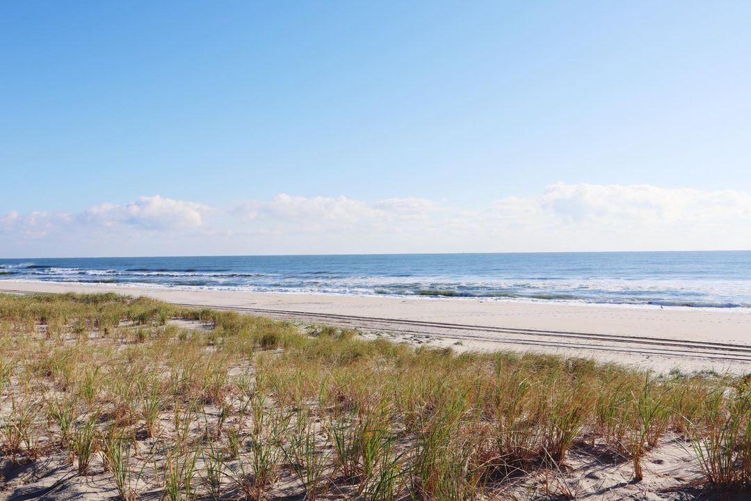 LBI Nothing spookier than an empty beach & cold weather  Happy Halloween, stay safe!…