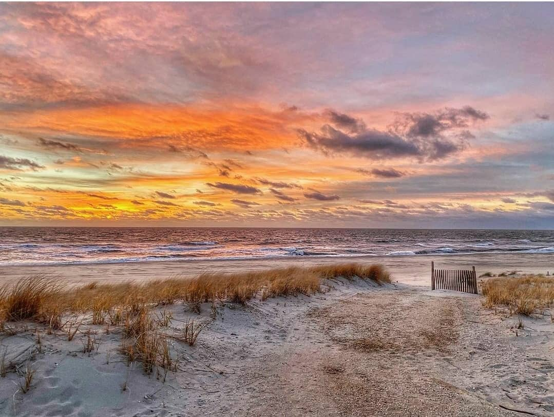 LBI Rise and shine    from Rachel Ellentuck ( of this morning's sunny skies to tide …