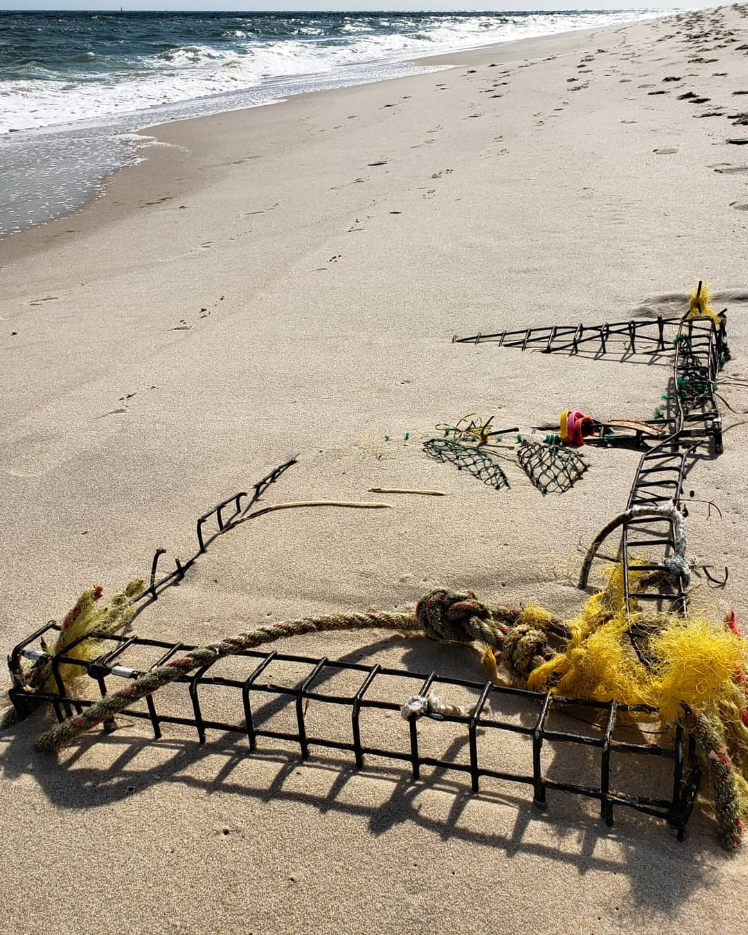 LBI You never know what the tide giveth.  We found a buried lobster trap washed up, …