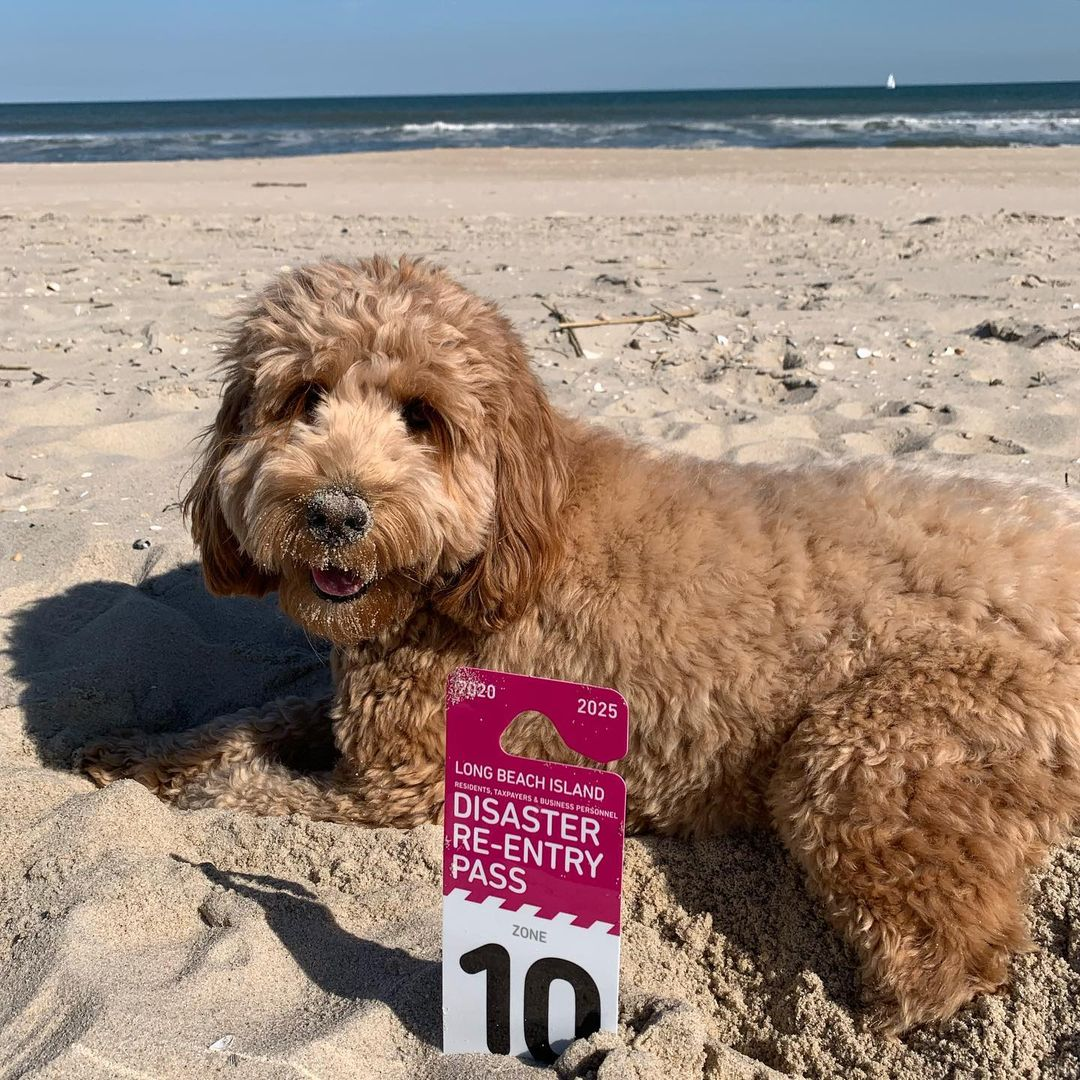 LBI Effective immediately, Long Beach Township has closed beaches except property ow…