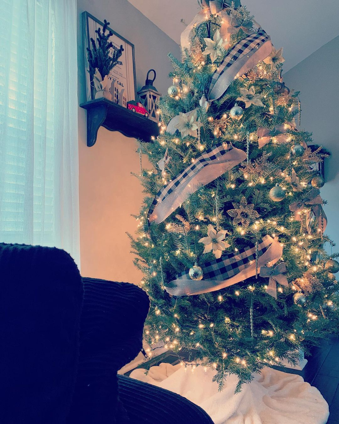 LBI Got my tree up today and it's finally starting to feel like Christmas in our hou…