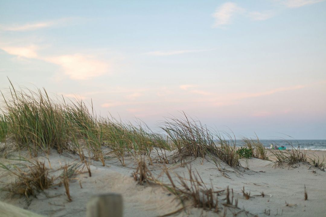 LBI Just a reminder for Surf City Businesses… We need your Thanksgiving Weekend an…