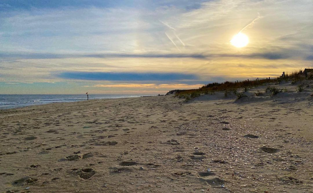 LBI follow the sparkling shells—they'll show you the way            …