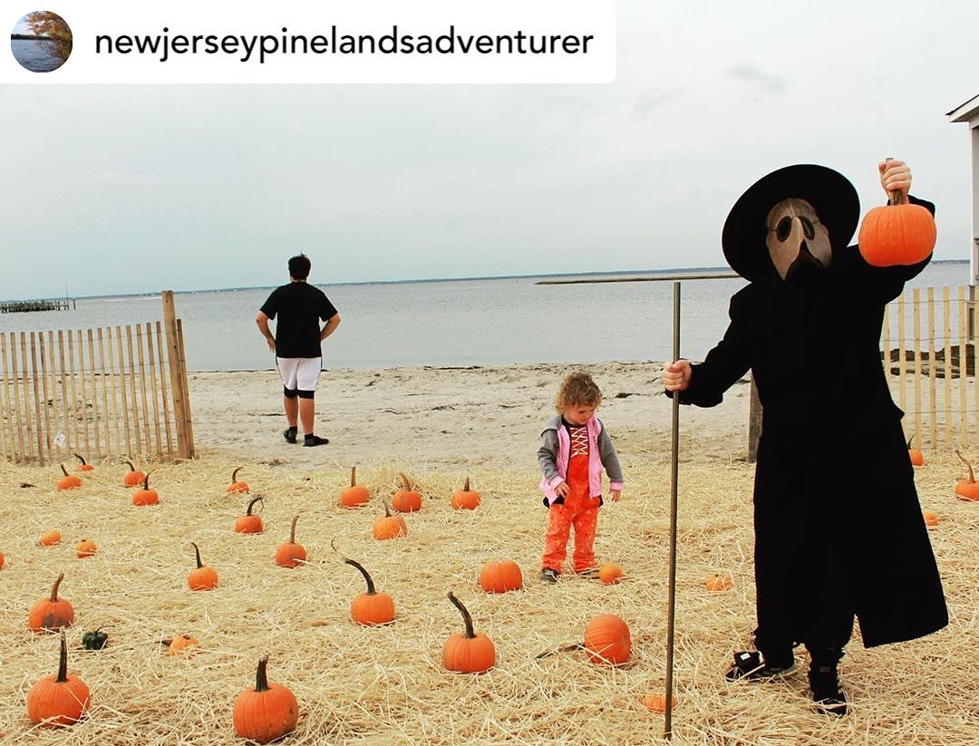 Read more about the article LBI Thank you  &  and everyone who came out to pick pumpkins  it was a great day! Po…