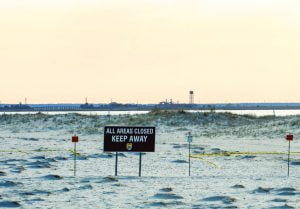 Read more about the article Forsythe Refuge Appeals to Community to Help Protect Holgate's Beach-Nesting Birds